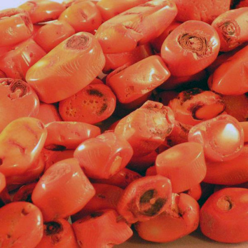 Koraal, oranje, plat, ongev. 15 x 20 mm, per streng