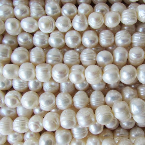Zoetwaterparel, wit, rond, met groeiringen, 6-7 mm, per streng